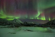 ECEC-Arctic (January)