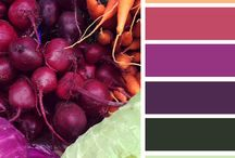 Color Inspirations / by Melissa Stacey