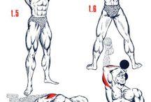 Ejercicios d músculos