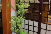 Small garden and plants - Japanese style (for Restaurants)