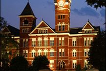 Auburn, Oh How I Miss Thee. . .  WDE / by Amanda