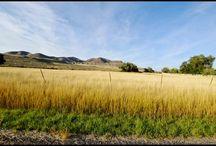Penrose Utah