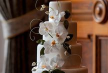 One Devonshire Gardens- Wedding Cake Photo-shoot. / Recent photo-shoot of some of our latest wedding cakes at One Devonshire Gardens in Glasgow.