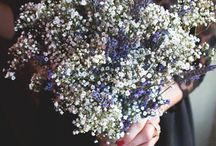 Flowers / Flower Ideas for Wedding