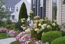 Heather's yard / by Bobbie Richard