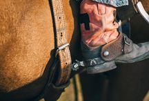 The Rider- WYOMING INFO