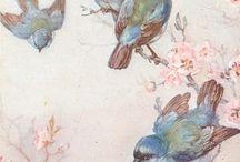 vogels/fugler