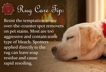 Rug Care Tips