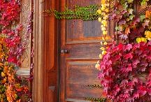 sweet doors / I love doors