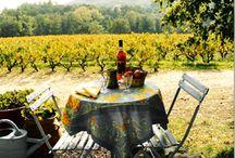 Wine & Vineyards / by Zena Smith
