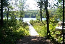 Listings - Land / For more information or if you have questions call us at 518-786-7007!