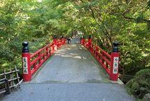 Temple Imakumano-kannon-ji / Imakumano-kannon-ji or short Kannon-ji is a buddhist temple in Kyoto. It is the 15th amulet issuing site of the Saigoku pilgrimage path.
