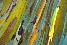 Strukturen, Farbe, Muster / Unterschiedliche Texturen und Materialien