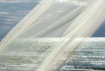 tengerparti terasz