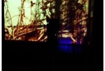 LiveRoom / Online Concert Venue ~  Spontaneous Art/Music playground ~ http://liveroom.shivnakaun.com