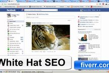 Texas SEO Services