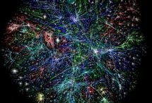 COM 316 - The Web
