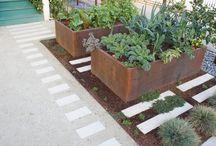 vegetables garden ideas