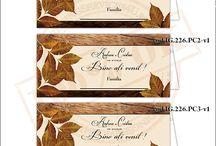 Place Card -uri de Nunta / Place Carduri / Plicuri de bani, Meniuri, Numere de Masa pentru Nunta