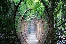 Bridges / by L Maxey