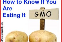 GMO DANGER KEEP OUT