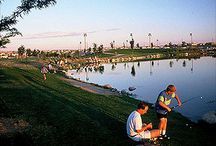 Highlands Ranch Community / Great things about the city we live in - Highlands Ranch, CO.