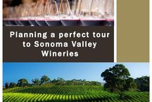 Best sonoma wineries / There are all kinds of annual events that take place in this part of the state, with many of the wineries in Sonoma saving some of their rarer wines for those special occasions. http://www.kazzit.com/content/sonoma-wineries.html