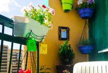Patio & Deck Gardening