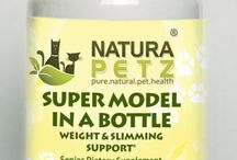 Super Model in a Bottle / Super Model In a Bottle is holistically for obese and overweight dogs and cats as a reducing agent to burn dietary fat; contributes to a balanced weight loss regimen by supporting healthy metabolic rate, organs, nutrient absorption & colon health; by reducing high cholesterol & triglycerides. Supports  the release of TSH & hormones thyroxine (T4) & triiodothyronine (T3) and proper regulation of the thyroid gland.