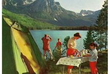 Collage Camping