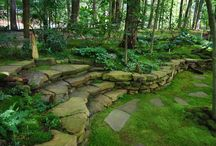 Home : Backyard landscape / Landscape ideas for the backyard