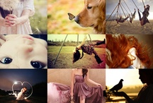 Inspiring Pictures! / Photos, pictures, words that inspire, create thought, to make you smile, dream, think, grow...
