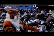 Sturgis, Daytona & Bike Week Events