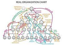 Organisaties enzo