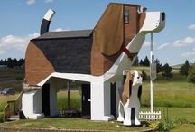 Wacky Homes / A selection of wacky home designs that we have come across.