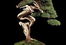 Bonsai / Ancient Tiny Trees