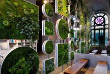 Unique ideas with plants / by Greenery Office Interiors Ltd