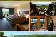 Places to Stay / There are more than 200 bed & breakfasts, hotels, motels, country inns, cabins, campgrounds and lakefront rental properties in Finger Lakes Wine Country. From simple to spectacular, your Finger Lakes vacation accommodation options are endless. / by Finger Lakes WineCountry