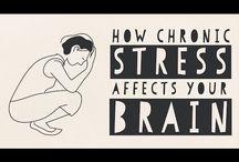 6- Stress & stressmanagement