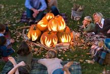 Bonfire night ideas / Ideas to help you enjoy bonfire night, whilst protecting your garden!