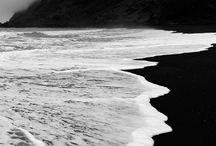 black & white nature