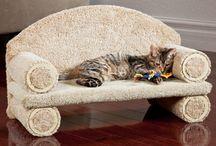 Kattenbed / leuke ideeen voor katten bedden
