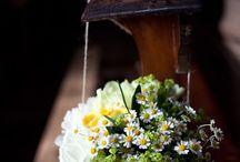 Margherite matrimonio