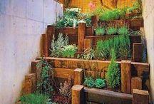 progettazioni giardini