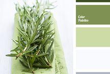 Keuken kleuren groen
