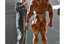 Heroes of bodybuilding