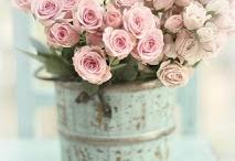 blommor och trädgård