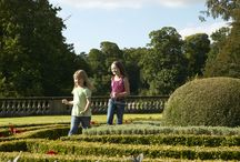 Family day out / Weston is open to visitors from May to September to enjoy a fun-filled day out!