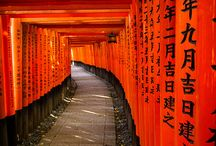 Japan / Things to do in Japan / by Arielle Zuckerberg