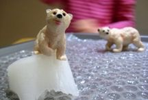 Polar animals / by Fiona Duffy